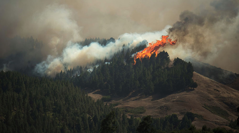 3 applications to follow the Gran Canaria fire live